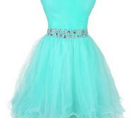 Cute Short Tulle Swe..